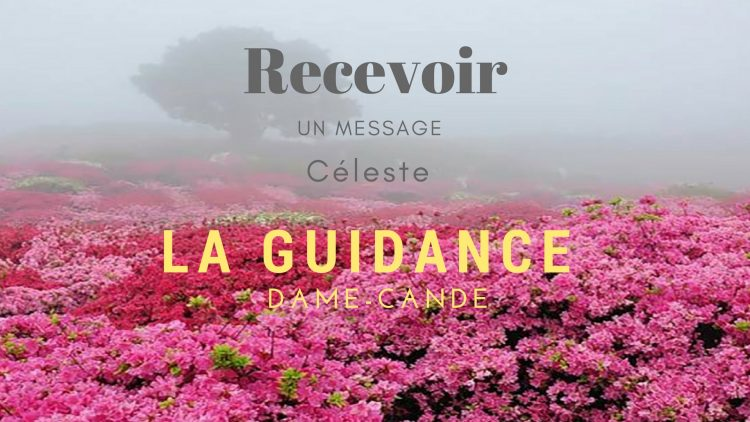 Rose-jardin-secret-guidance
